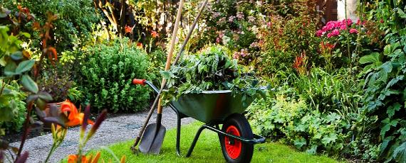 Prace ogrodnicze Kraków